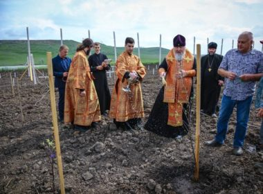 Яблоневый сад появится на фермерском хозяйстве епархии